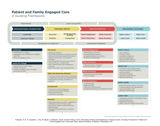 patient-and-family-engaged-care-a-guiding-framework